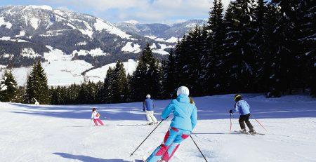 Garmin Ski maps